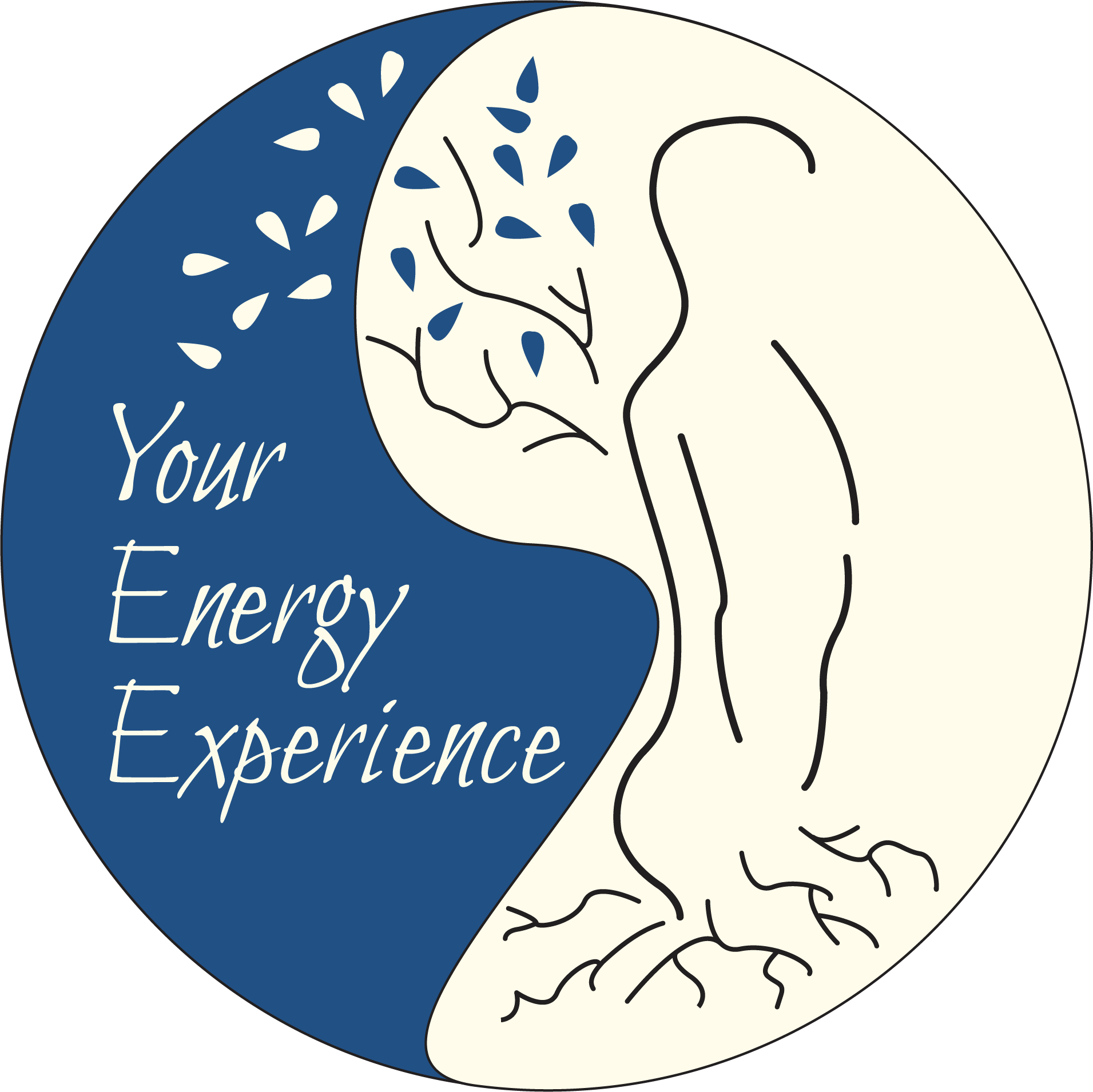 Your Energy Experience